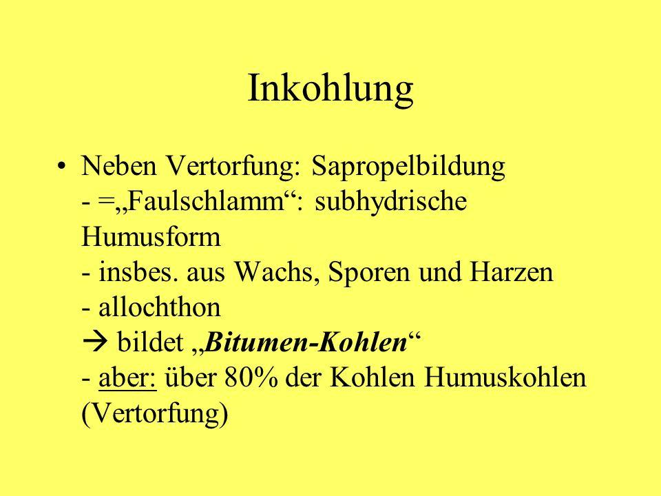 Inkohlung Neben Vertorfung: Sapropelbildung - =Faulschlamm: subhydrische Humusform - insbes. aus Wachs, Sporen und Harzen - allochthon bildet Bitumen-