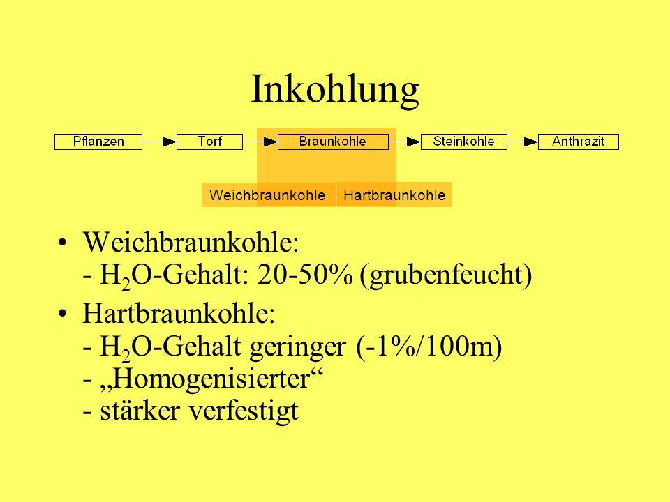 Inkohlung Weichbraunkohle: - H 2 O-Gehalt: 20-50% (grubenfeucht) Hartbraunkohle: - H 2 O-Gehalt geringer (-1%/100m) - Homogenisierter - stärker verfes