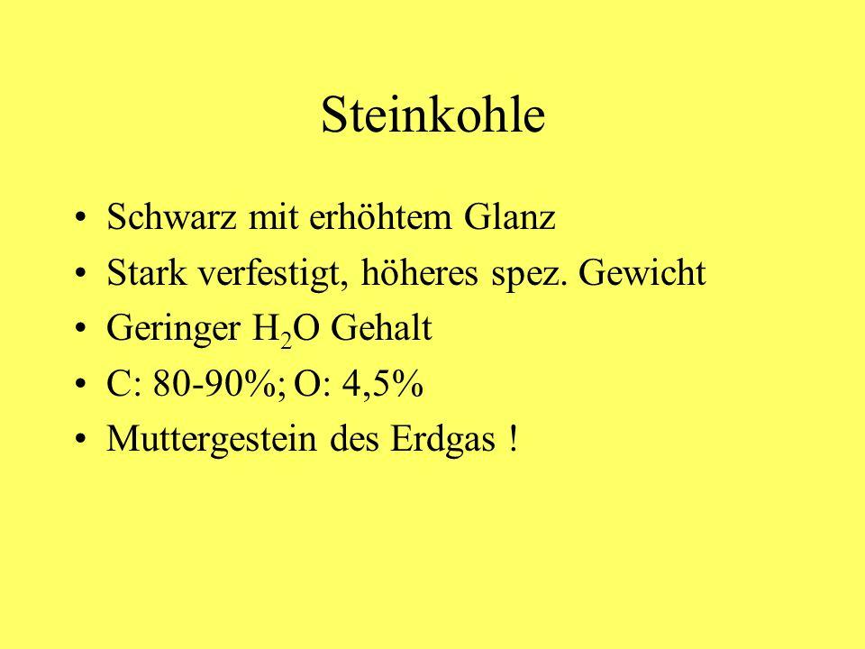 Steinkohle Schwarz mit erhöhtem Glanz Stark verfestigt, höheres spez. Gewicht Geringer H 2 O Gehalt C: 80-90%; O: 4,5% Muttergestein des Erdgas !