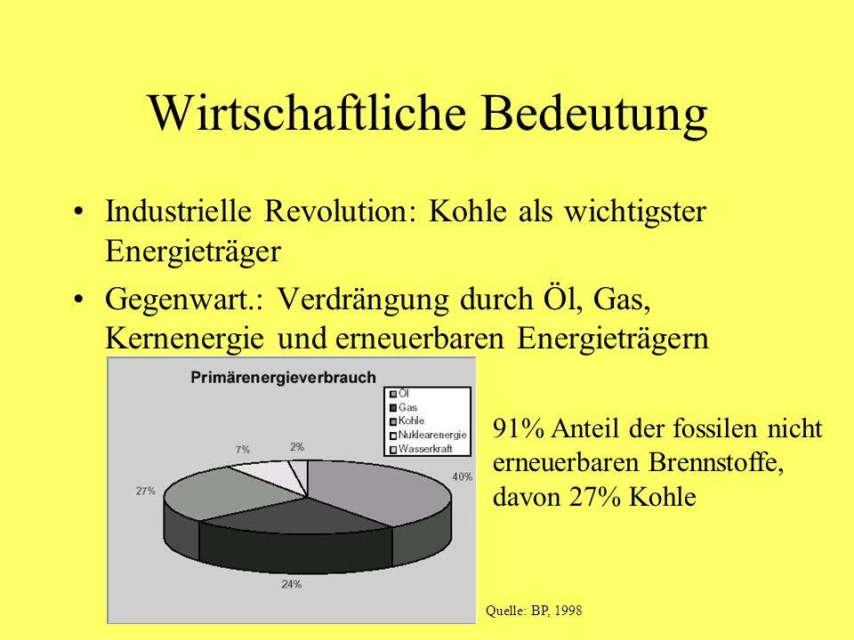 Wirtschaftliche Bedeutung Industrielle Revolution: Kohle als wichtigster Energieträger Gegenwart.: Verdrängung durch Öl, Gas, Kernenergie und erneuerb