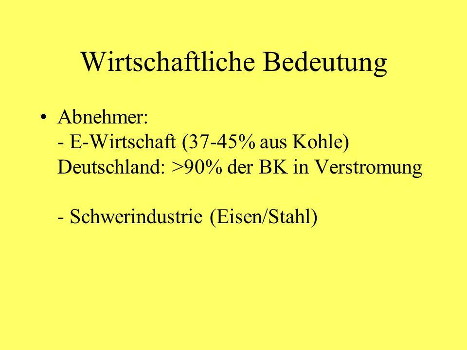 Wirtschaftliche Bedeutung Abnehmer: - E-Wirtschaft (37-45% aus Kohle) Deutschland: >90% der BK in Verstromung - Schwerindustrie (Eisen/Stahl)