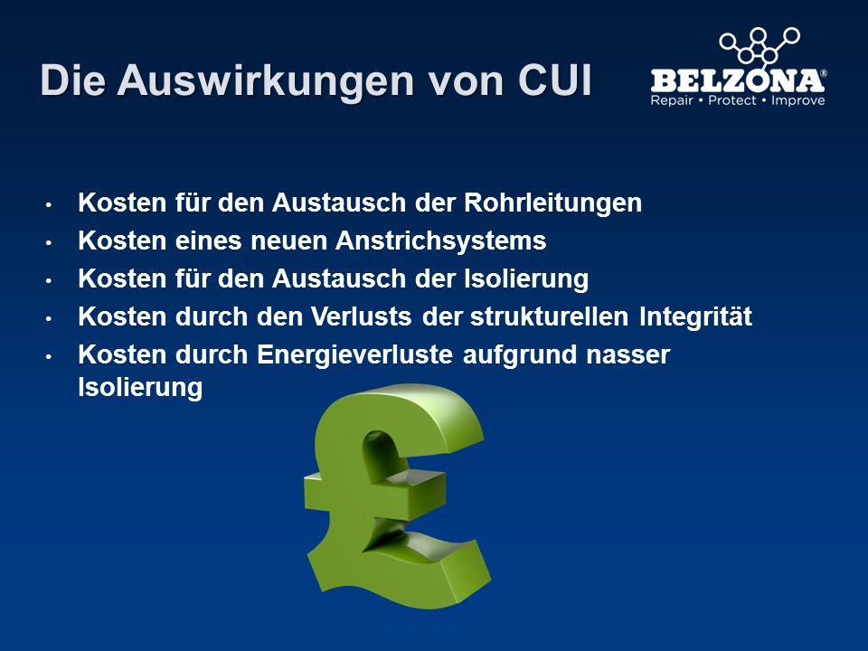 Die Auswirkungen von CUI Kosten für den Austausch der Rohrleitungen Kosten eines neuen Anstrichsystems Kosten für den Austausch der Isolierung Kosten