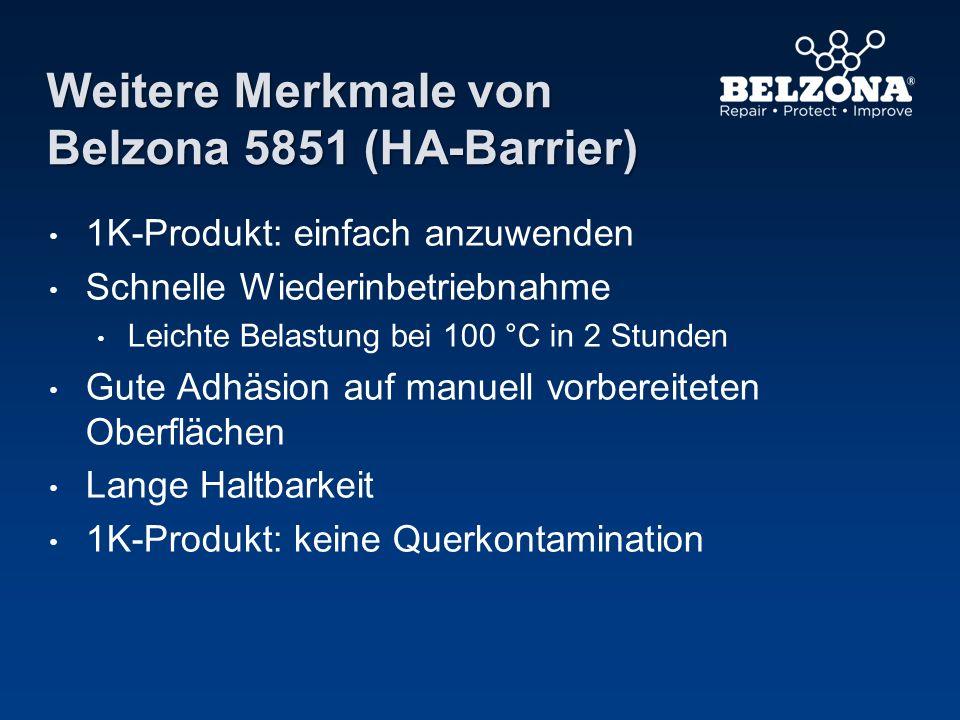 Weitere Merkmale von Belzona 5851 (HA-Barrier) 1K-Produkt: einfach anzuwenden Schnelle Wiederinbetriebnahme Leichte Belastung bei 100 °C in 2 Stunden