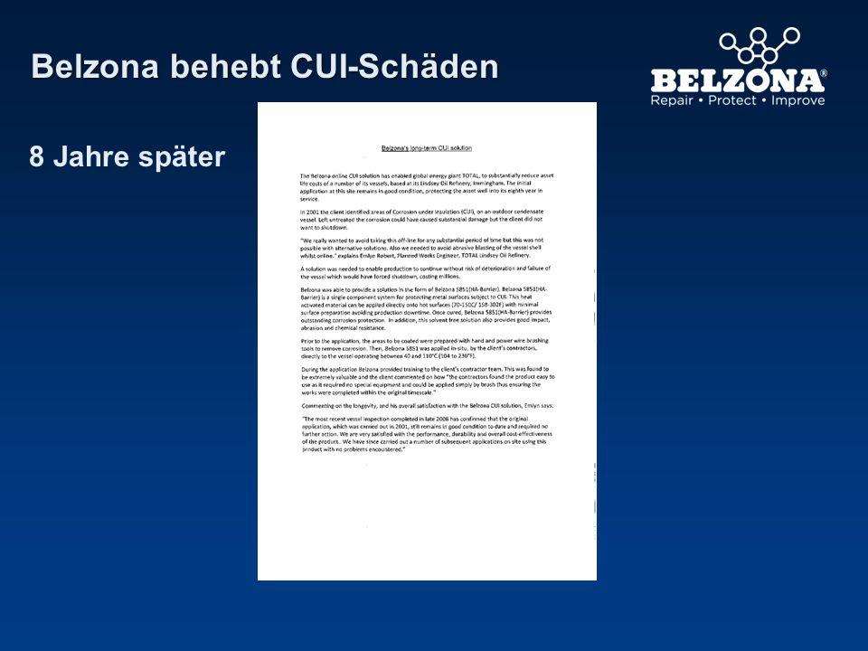 8 Jahre später Belzona behebt CUI-Schäden