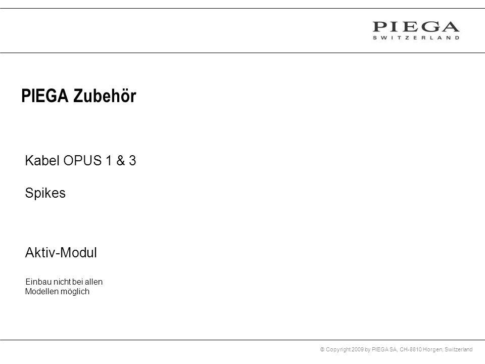 © Copyright 2009 by PIEGA SA, CH-8810 Horgen, Switzerland PIEGA Zubehör Kabel OPUS 1 & 3 Spikes Aktiv-Modul Einbau nicht bei allen Modellen möglich