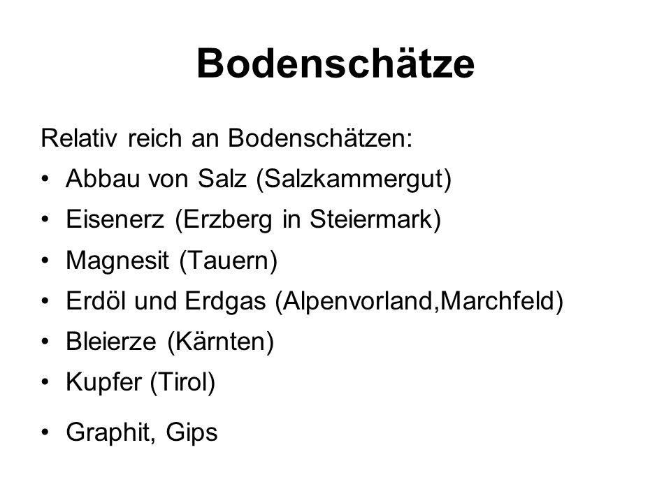 Bodenschätze Relativ reich an Bodenschätzen: Abbau von Salz (Salzkammergut) Eisenerz (Erzberg in Steiermark) Magnesit (Tauern) Erdöl und Erdgas (Alpen
