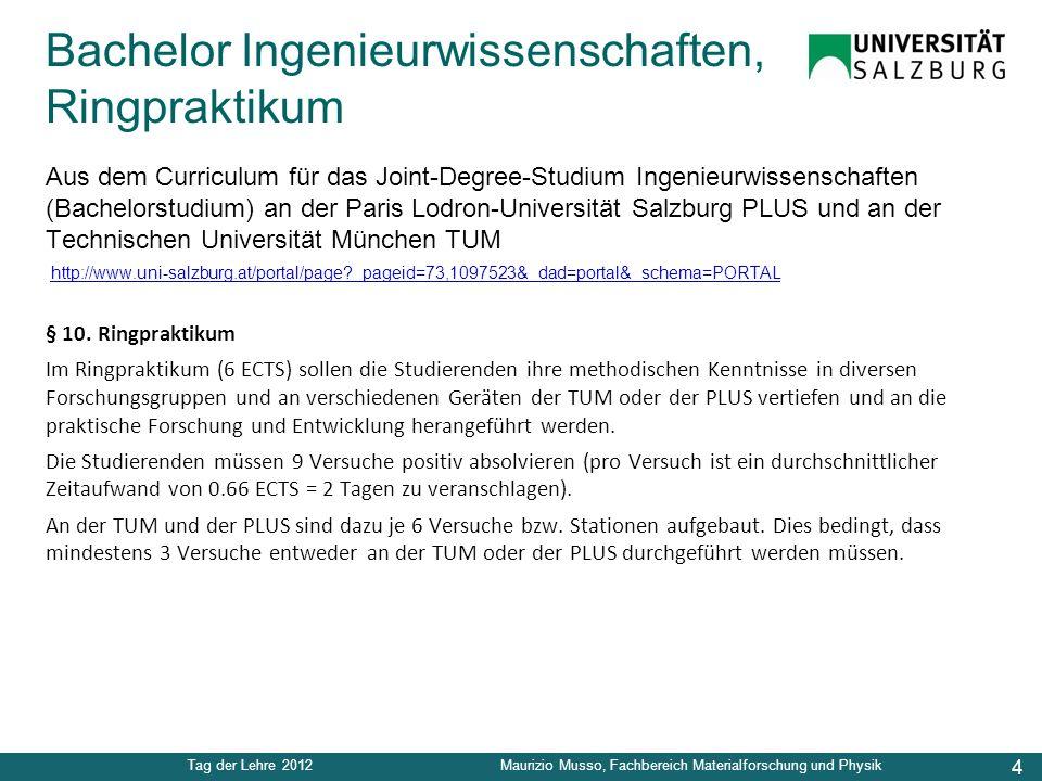 4 Tag der Lehre 2012Maurizio Musso, Fachbereich Materialforschung und Physik Aus dem Curriculum für das Joint-Degree-Studium Ingenieurwissenschaften (