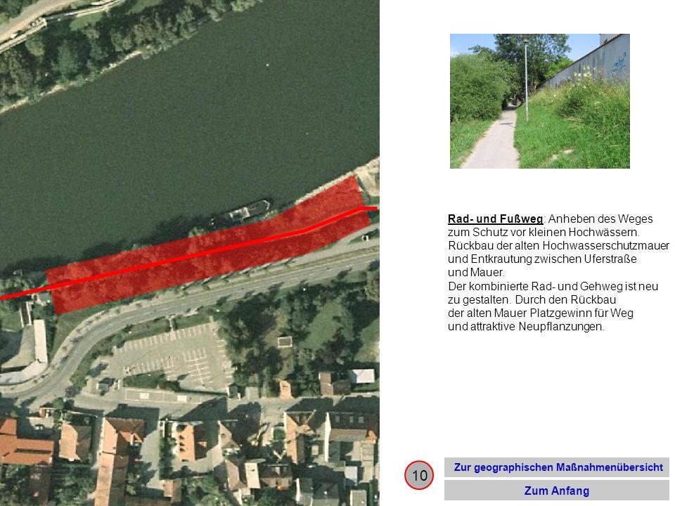10 Zur geographischen Maßnahmenübersicht Zum Anfang Rad- und Fußweg: Anheben des Weges zum Schutz vor kleinen Hochwässern. Rückbau der alten Hochwasse
