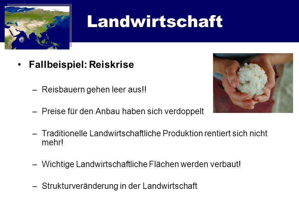 Landwirtschaft Reisanbau im Rahmen von FAIRTRADE –Preis unabhängig vom Weltmarktpreis –Einhaltung von bestimmten Standards Ökologische Arbeitsrechtliche –Einhaltung bestimmte Qualitätskriterien