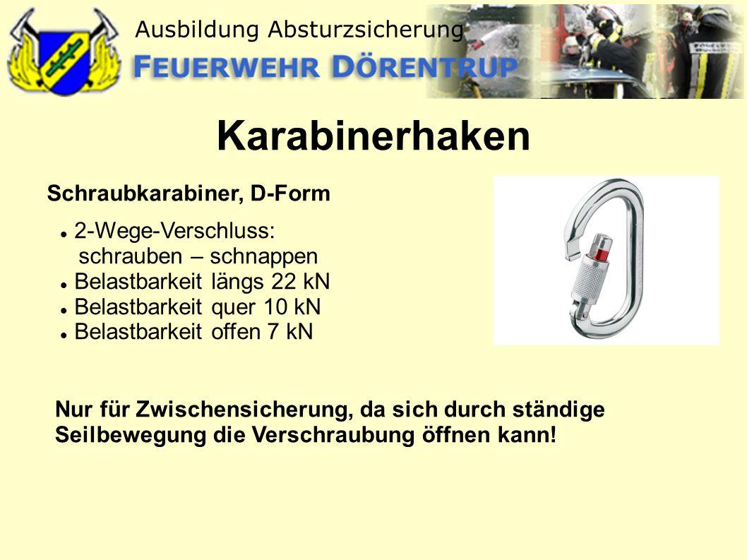 Ausbildung Absturzsicherung Karabinerhaken Schraubkarabiner, D-Form 2-Wege-Verschluss: schrauben – schnappen Belastbarkeit längs 22 kN Belastbarkeit q