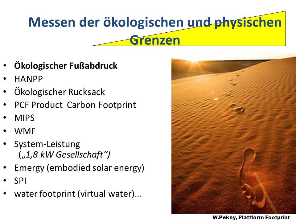 Ökologischer Fußabdruck HANPP Ökologischer Rucksack PCF Product Carbon Footprint MIPS WMF System-Leistung (1,8 kW Gesellschaft) Emergy (embodied solar