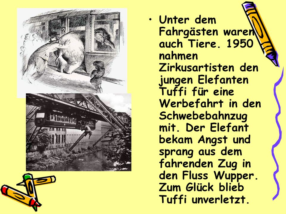 Unter dem Fahrgästen waren auch Tiere. 1950 nahmen Zirkusartisten den jungen Elefanten Tuffi für eine Werbefahrt in den Schwebebahnzug mit. Der Elefan