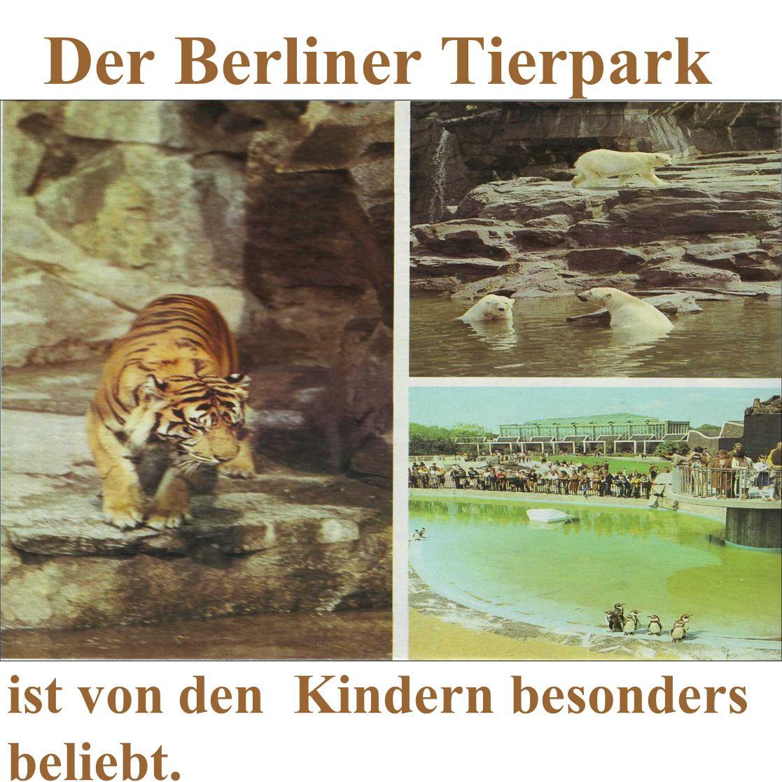 Der Berliner Tierpark ist von den Kindern besonders beliebt.