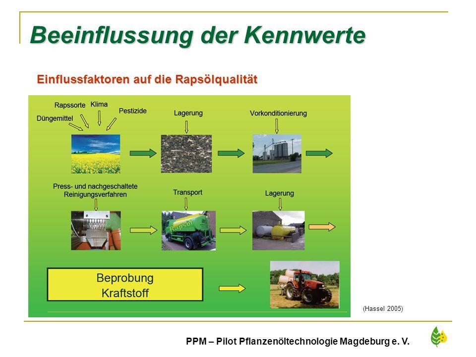 27 PPM – Pilot Pflanzenöltechnologie Magdeburg e. V. Beeinflussung der Kennwerte (Hassel 2005) Einflussfaktoren auf die Rapsölqualität