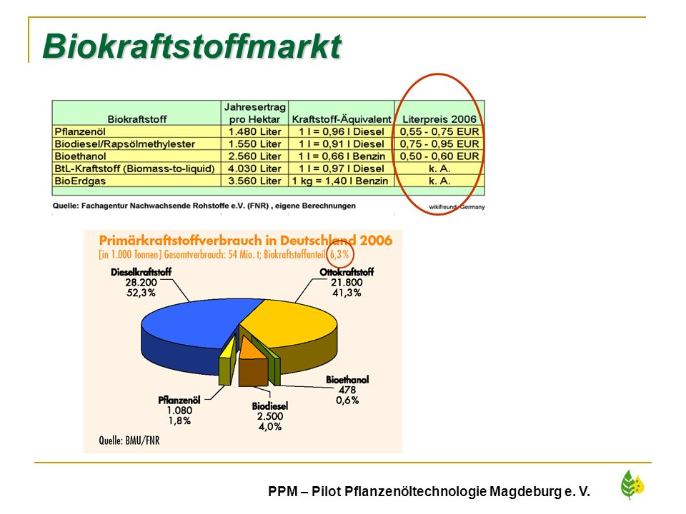 8 PPM – Pilot Pflanzenöltechnologie Magdeburg e. V. Biokraftstoffmarkt