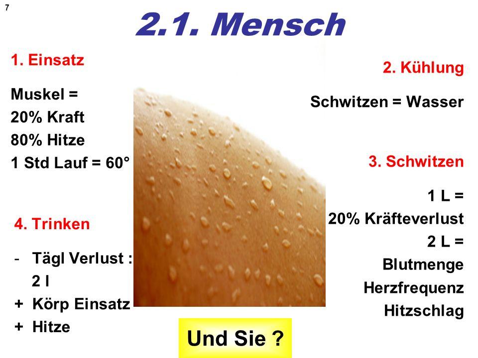 7 2.1. Mensch 1. Einsatz Muskel = 20% Kraft 80% Hitze 1 Std Lauf = 60° 2. Kühlung Schwitzen = Wasser 4. Trinken -Tägl Verlust : 2 l + Körp Einsatz + H