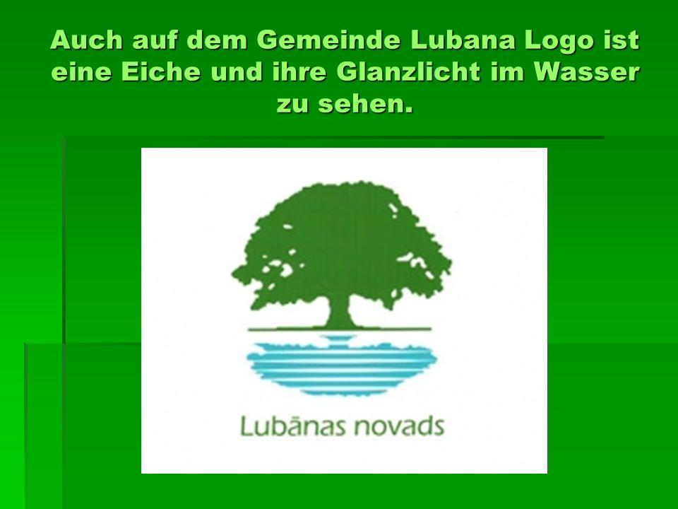 Auch auf dem Gemeinde Lubana Logo ist eine Eiche und ihre Glanzlicht im Wasser zu sehen.
