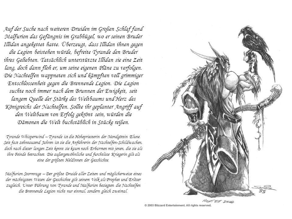 Auf der Suche nach weiteren Druiden im Großen Schlaf fand Malfurion das Gefängnis im Grabhügel, wo er seinen Bruder Illidan angekettet hatte. Überzeug