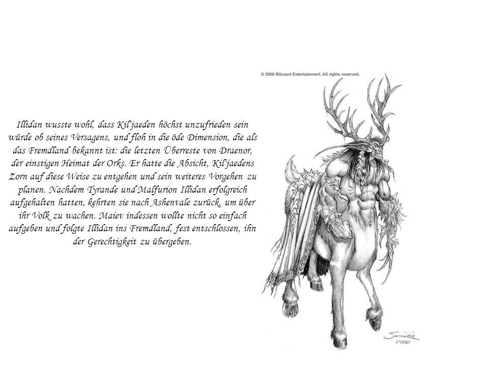 Illidan wusste wohl, dass Kiljaeden höchst unzufrieden sein würde ob seines Versagens, und floh in die öde Dimension, die als das Fremdland bekannt is