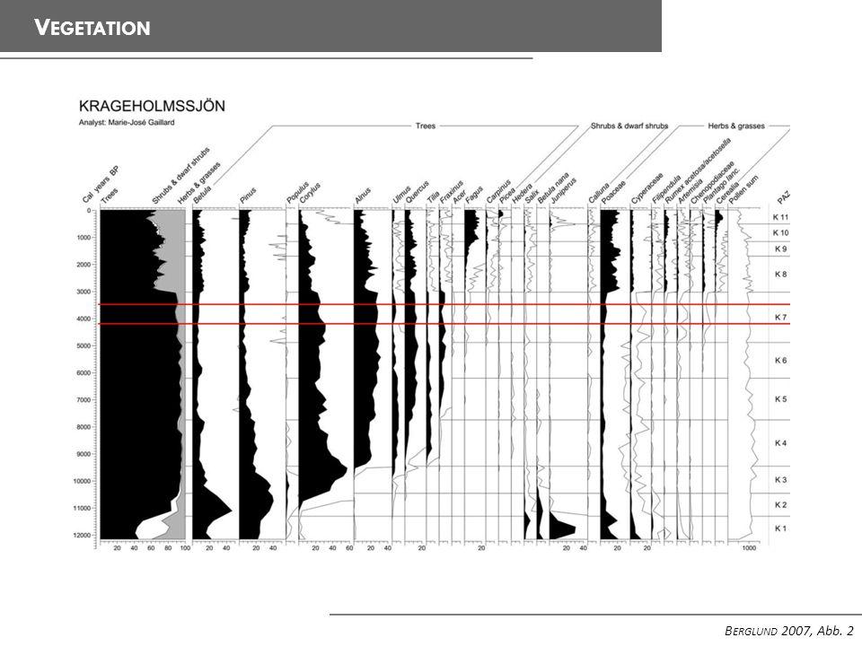 V EGETATION B ERGLUND 2007, Abb. 3
