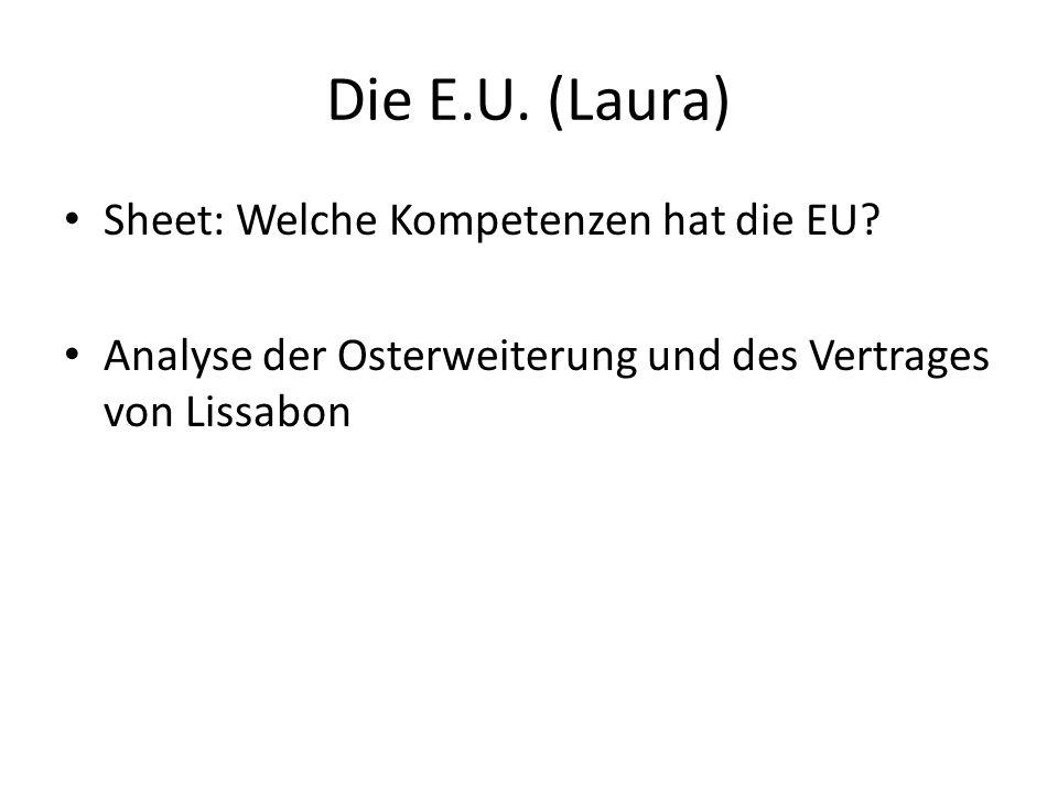 Die E.U.(Laura) Sheet: Welche Kompetenzen hat die EU.