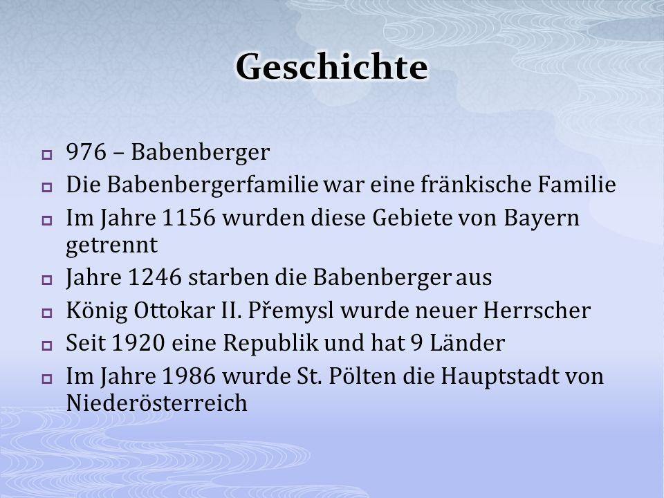 976 – Babenberger Die Babenbergerfamilie war eine fränkische Familie Im Jahre 1156 wurden diese Gebiete von Bayern getrennt Jahre 1246 starben die Babenberger aus König Ottokar II.