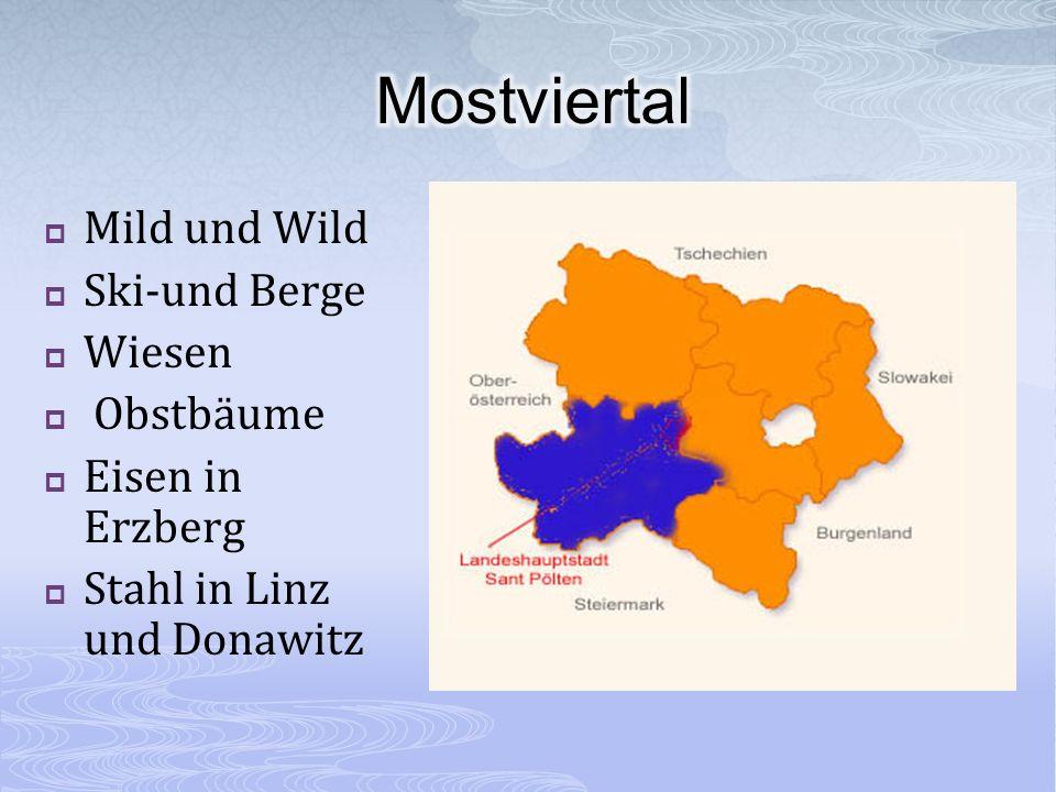 Mild und Wild Ski-und Berge Wiesen Obstbäume Eisen in Erzberg Stahl in Linz und Donawitz