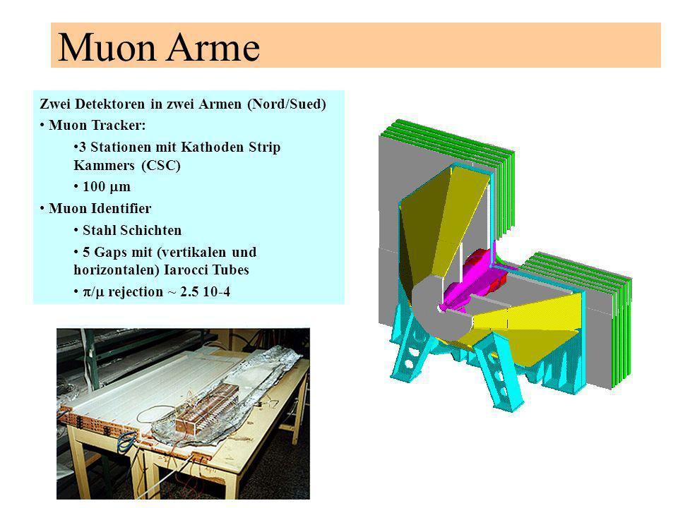 Muon Arme Zwei Detektoren in zwei Armen (Nord/Sued) Muon Tracker: 3 Stationen mit Kathoden Strip Kammers (CSC) 100 m Muon Identifier Stahl Schichten 5 Gaps mit (vertikalen und horizontalen) Iarocci Tubes / rejection ~ 2.5 10-4