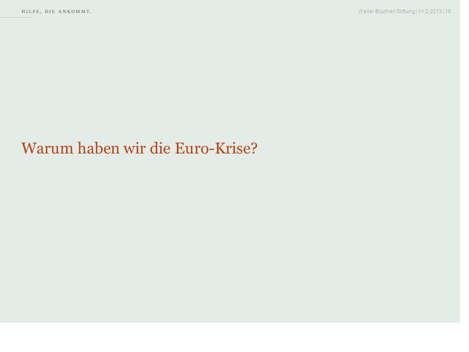 Walter Blüchert Stiftung | 11.2.2013 | 16 Warum haben wir die Euro-Krise?