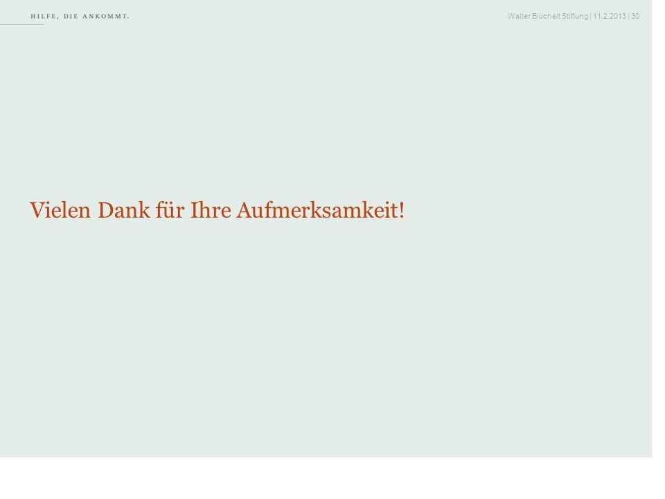 Walter Blüchert Stiftung | 11.2.2013 | 30 Vielen Dank für Ihre Aufmerksamkeit!