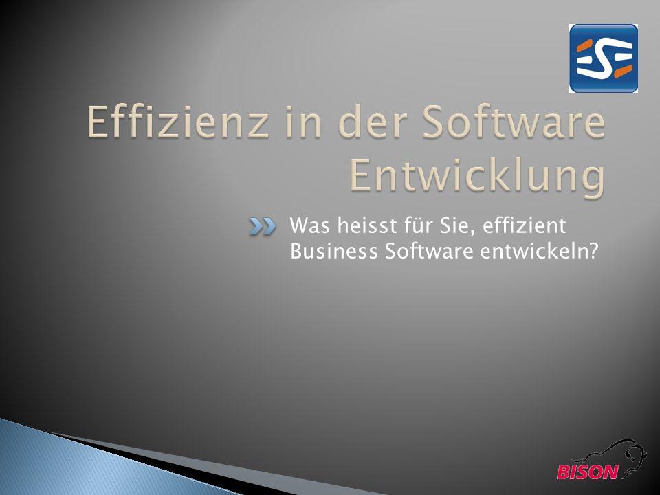 Was heisst für Sie, effizient Business Software entwickeln?