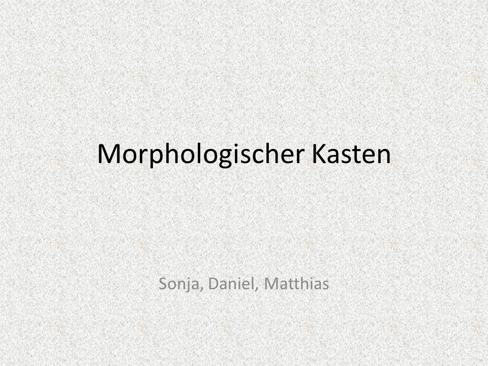 Morphologischer Kasten Sonja, Daniel, Matthias