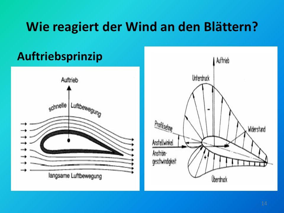 Wie reagiert der Wind an den Blättern? Auftriebsprinzip 14