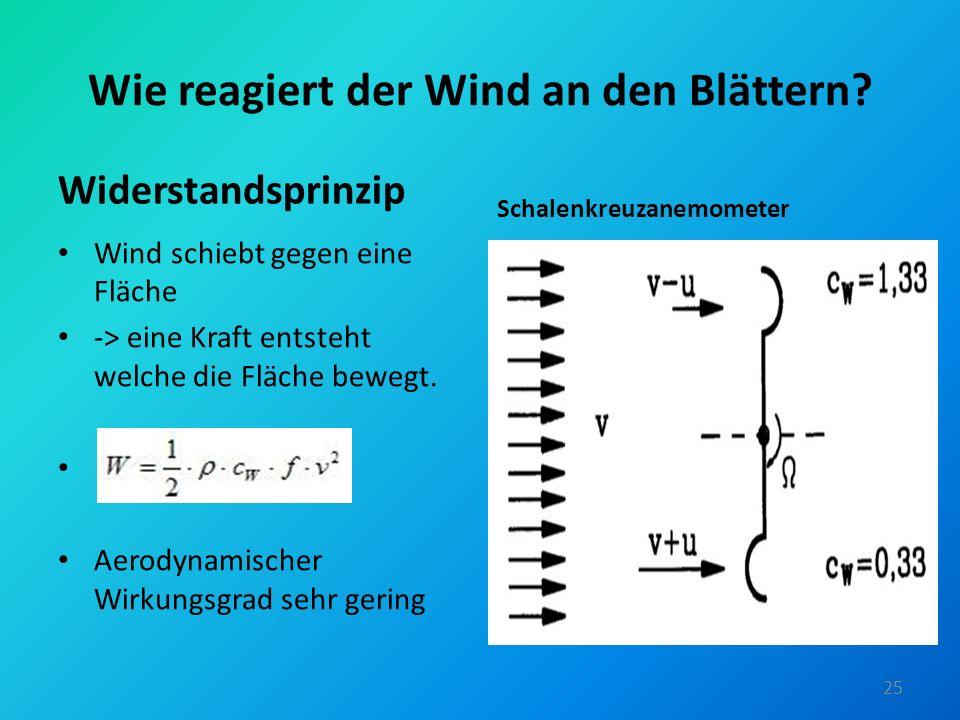 Wie reagiert der Wind an den Blättern? Widerstandsprinzip Wind schiebt gegen eine Fläche -> eine Kraft entsteht welche die Fläche bewegt. Aerodynamisc