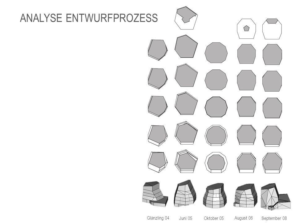 Glänzling 04 Ausführungsprojekt ANALYSE ENTWURFSPROZESS Der Glänzling war das Siegerprojekt, das von sieben Studenten noch einmal vertieft und baueingabereif bearbeitet wurde.