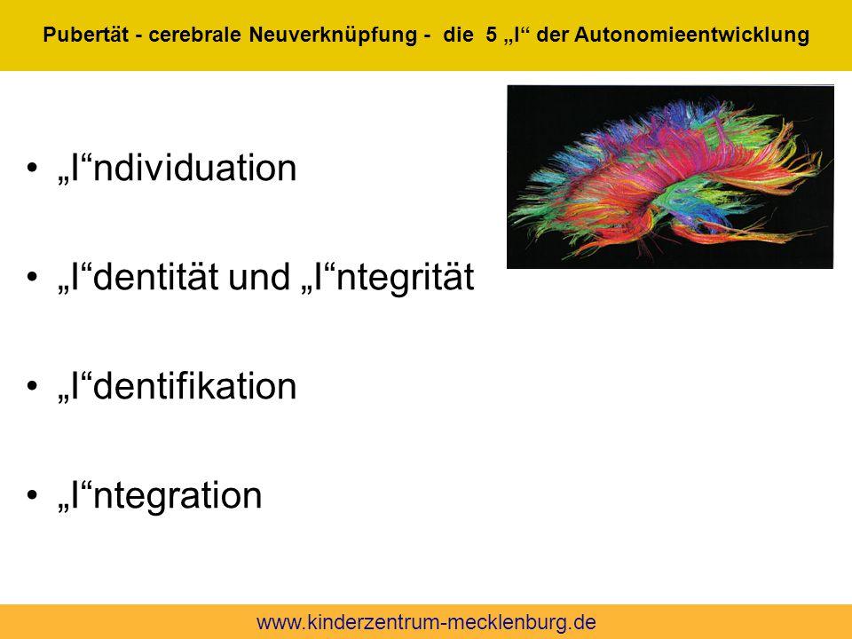 """""""I""""ndividuation """"I""""dentität und """"I""""ntegrität """"I""""dentifikation """"I""""ntegration Quelle: die 5 """"I"""" der Autonomieentwicklung n. A. Artner, Wien Pubertät - c"""