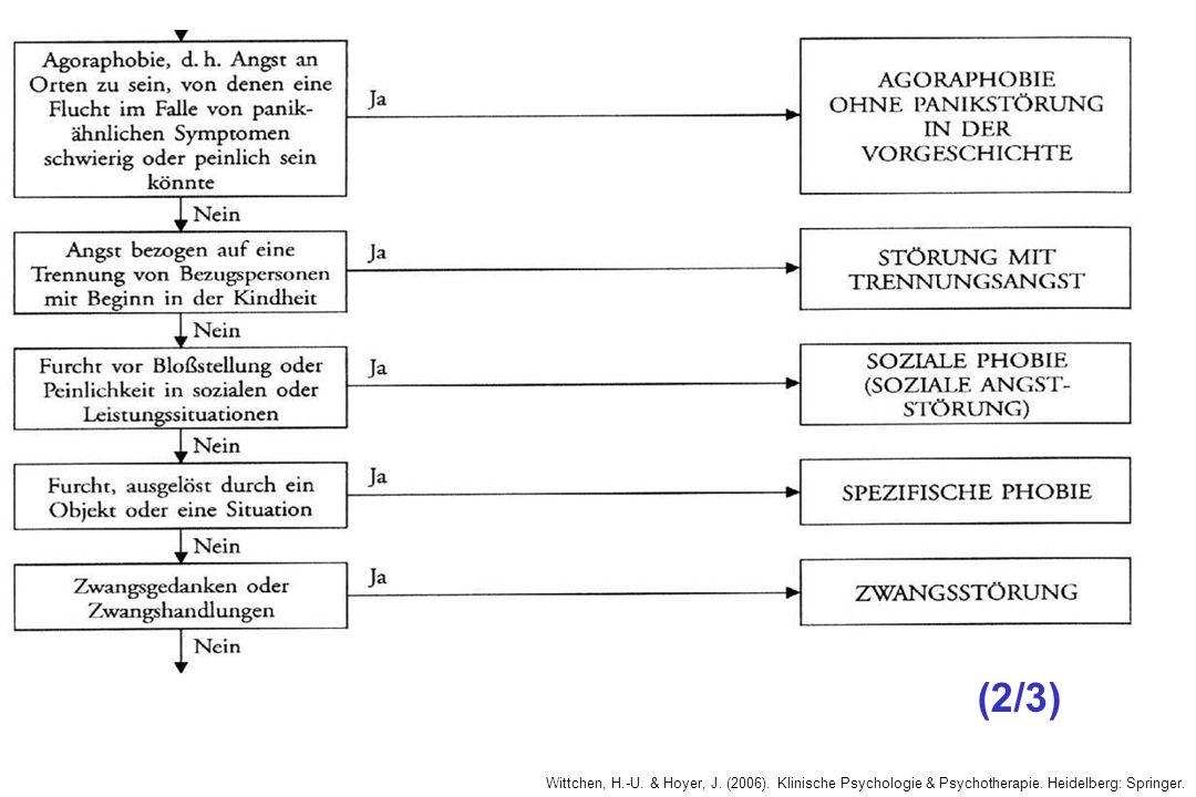 Wittchen, H.-U. & Hoyer, J. (2006). Klinische Psychologie & Psychotherapie. Heidelberg: Springer. (2/3)