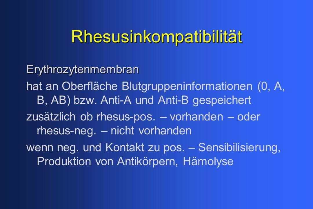 Rhesusinkompatibilität Erythrozytenmembran hat an Oberfläche Blutgruppeninformationen (0, A, B, AB) bzw. Anti-A und Anti-B gespeichert zusätzlich ob r