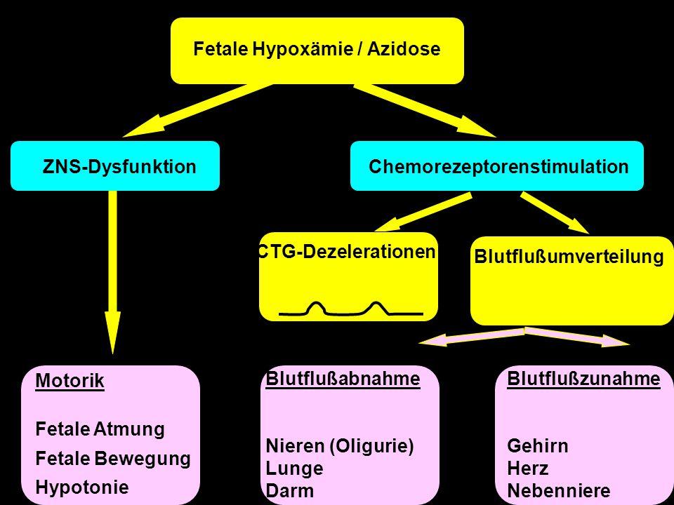 ZNS-DysfunktionChemorezeptorenstimulation Blutflußzunahme Gehirn Herz Nebenniere SpätdezelerationenBlutflußumverteilung Blutflußabnahme Nieren (Oligur