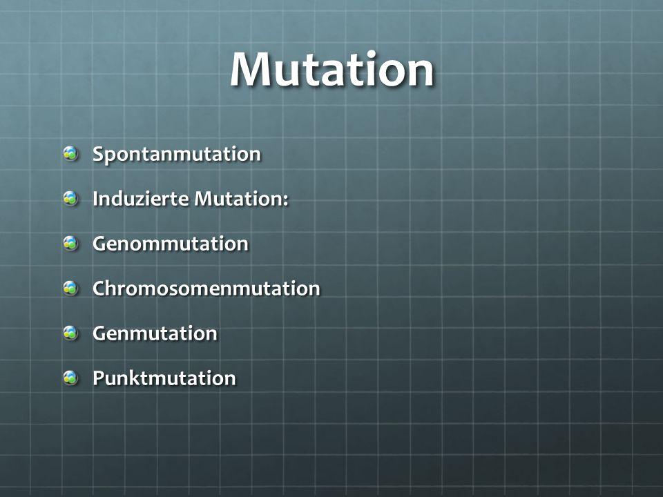 Mutation Spontanmutation Induzierte Mutation: GenommutationChromosomenmutationGenmutationPunktmutation