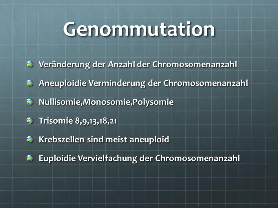 Genommutation Veränderung der Anzahl der Chromosomenanzahl Aneuploidie Verminderung der Chromosomenanzahl Nullisomie,Monosomie,Polysomie Trisomie 8,9,