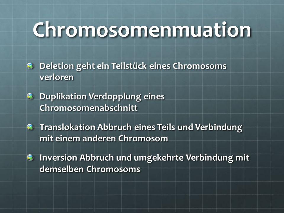 Chromosomenmuation Deletion geht ein Teilstück eines Chromosoms verloren Duplikation Verdopplung eines Chromosomenabschnitt Translokation Abbruch eine