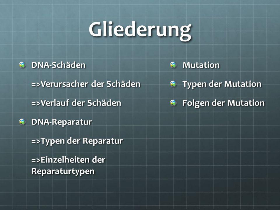 Gliederung DNA-Schäden =>Verursacher der Schäden =>Verlauf der Schäden DNA-Reparatur =>Typen der Reparatur =>Einzelheiten der Reparaturtypen Mutation