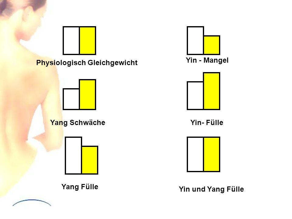 Physiologisch Gleichgewicht Yang Schwäche Yang Fülle Yin - Mangel Yin- Fülle Yin und Yang Fülle