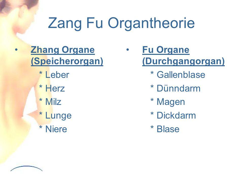 Zang Fu Organtheorie Zhang Organe (Speicherorgan) * Leber * Herz * Milz * Lunge * Niere Fu Organe (Durchgangorgan) * Gallenblase * Dünndarm * Magen * Dickdarm * Blase