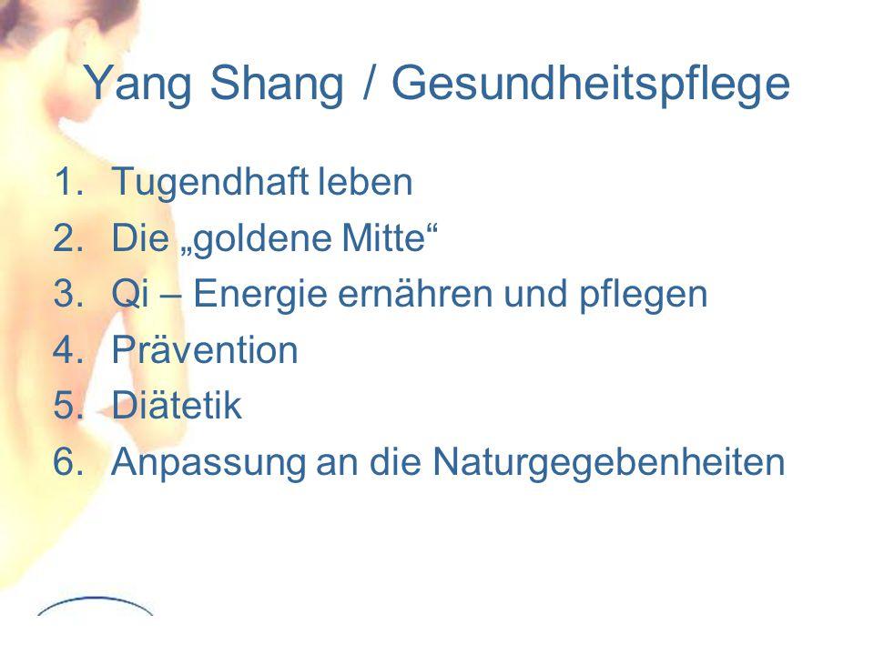 """Yang Shang / Gesundheitspflege 1.Tugendhaft leben 2.Die """"goldene Mitte 3.Qi – Energie ernähren und pflegen 4.Prävention 5.Diätetik 6.Anpassung an die Naturgegebenheiten"""