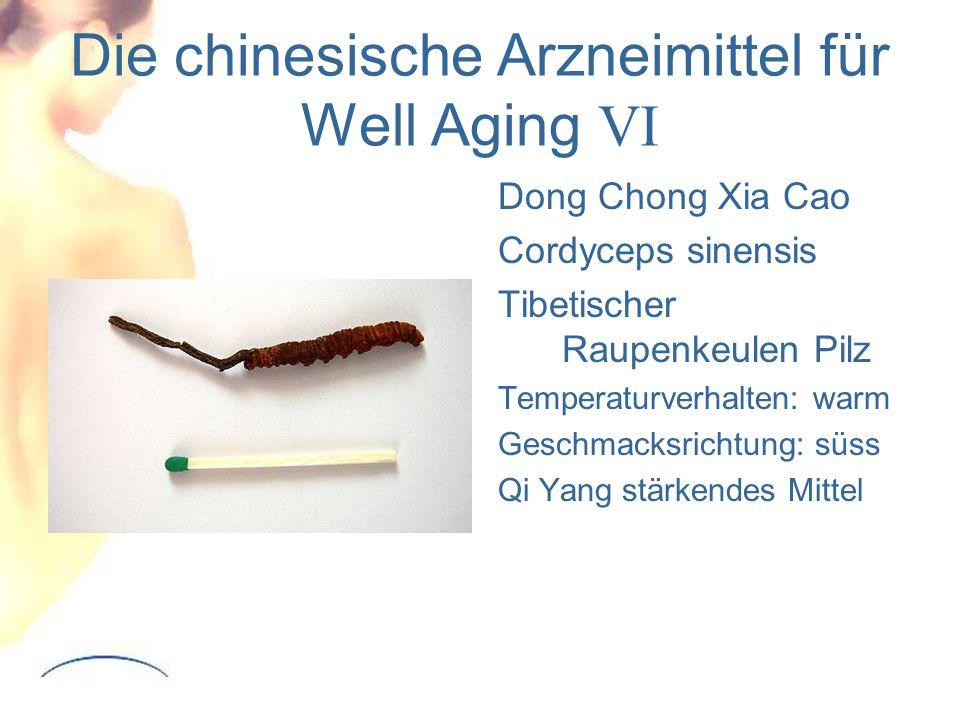 Die chinesische Arzneimittel für Well Aging VI Dong Chong Xia Cao Cordyceps sinensis Tibetischer Raupenkeulen Pilz Temperaturverhalten: warm Geschmacksrichtung: süss Qi Yang stärkendes Mittel