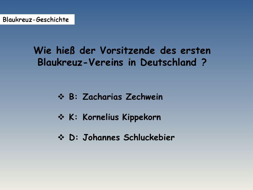 Wie hieß der Vorsitzende des ersten Blaukreuz-Vereins in Deutschland .