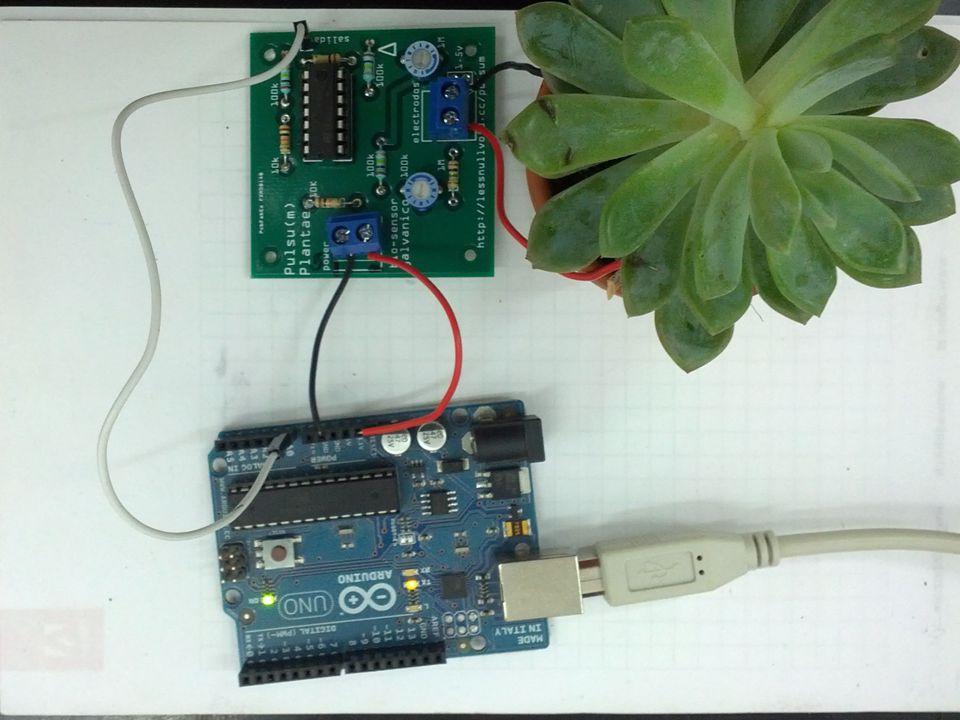 2) Programmiercode und Start a)Arduino Projekt öffnen b)Programmiercode Arduino hochladen http://lectures.derhess.de/humanplantinterfaces/code/Arduino_plant_pulsum_senso r.zip http://lectures.derhess.de/humanplantinterfaces/code/Arduino_plant_pulsum_senso r.zip d) Processingprojekt öffnen http://lectures.derhess.de/humanplantinterfaces/code/Processing_Graph_Visual.zip e) Processing Code ausführen f) Sensor an verschiedenen Stellen bei den Pflanzen anbringen und Ausschlag auf Computerbildschirm verfolgen (Feintuning an den Potentiometern nicht vergessen)