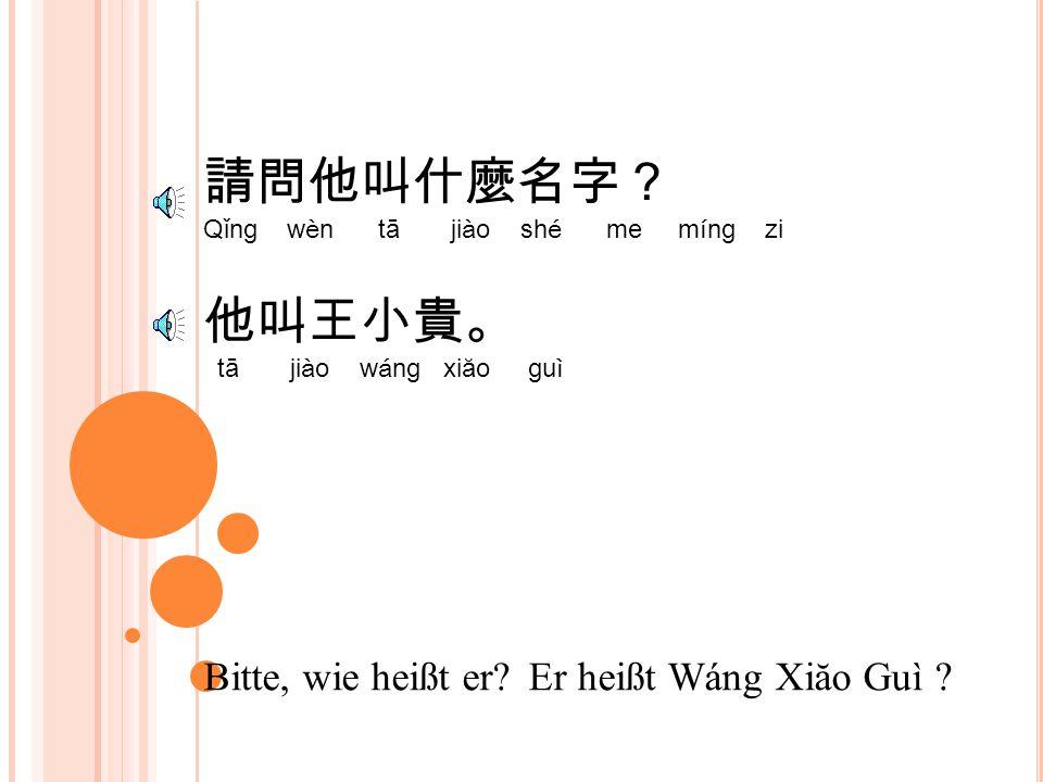 請問他叫什麼名字? Qǐng wèn tā jiào shé me míng zi 他叫王小貴。 tā jiào wáng xiăo guì Bitte, wie heißt er.
